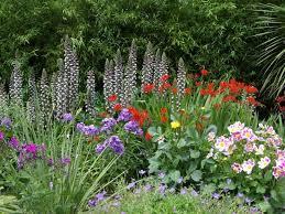 Caldo, alcune erbe aiutano a proteggersi